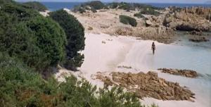 Der rosa Strand, gefilmt 1i64 von Michelangelo Antonioni